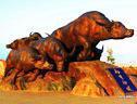 石雕牛,崛起牛,股市牛,猛牛劲牛,拓荒牛